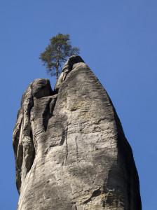 Adersbach - Weckelsdorfer Felsen