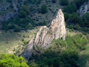 Weise Karpaten - Slowakei