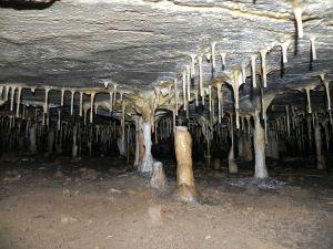Höhle Výpustek