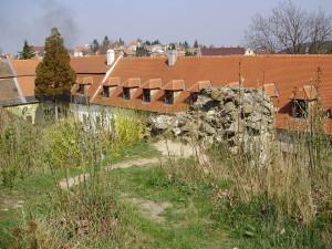 Überreste der alten Burg