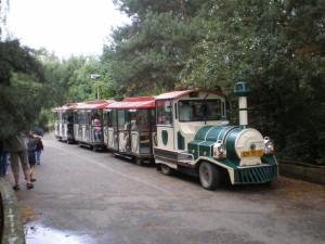 Zoo-Zug Amálka